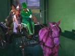 Horse of a Different Color - Wizard of Oz